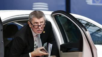 Tschechiens Regierungschef Babis sieht sich Betrugsvorwürfen ausgesetzt (Archiv)