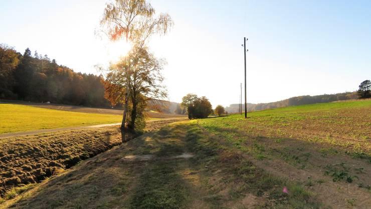 Der Biberenbach wird renaturiert, der Feldweg verlegt und die Elektroleitung in den Boden gelegt.