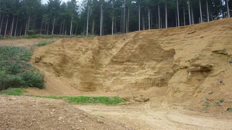 1000 Kubikmeter Mergel dürfen an der Kleinabbaustelle Ghei in Wegenstetten jährlich abgebaut werden. Nun soll die Konzession verlängert werden. zvg