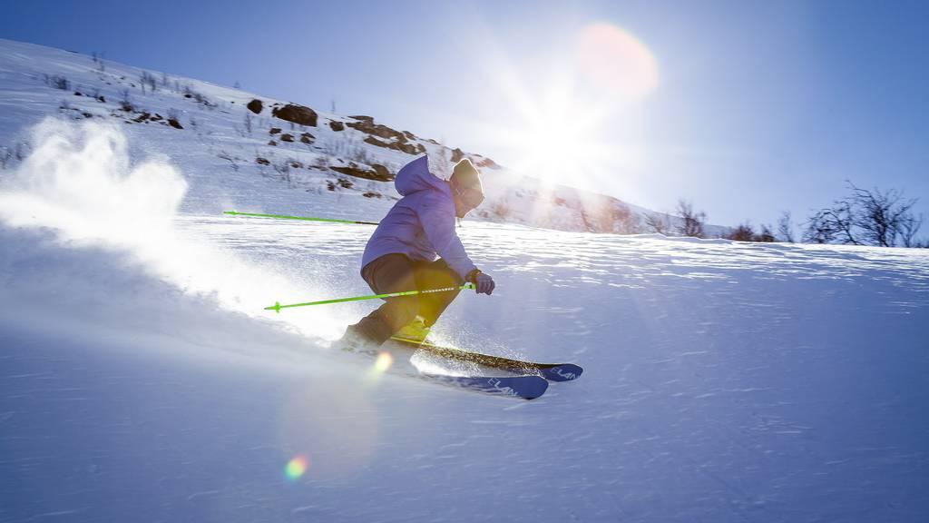 Skifahrer Typen