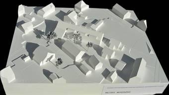 «Heisse Marroni»: So heisst das Alterswohnsiedlungs-Projekt in Lupfig.