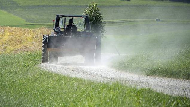 Die Flurwege der Gemeinden in den Bezirken Lebern, Bucheggberg und Wasseramt sollen saniert werden. (Symbolbild)