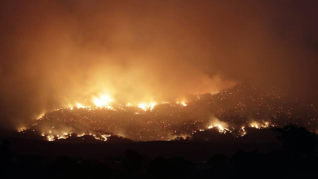Mehr als 70 Häuser bei Buschfeuer verbrannt