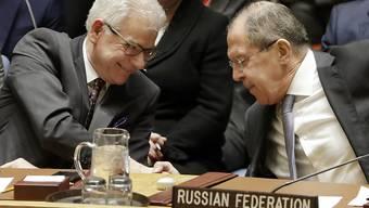 Der Uno-Sicherheitsrat will am Freitag über einen 30-tätigen Waffenstillstand in Syrien abstimmen. Russland hatte am Vortag einen entsprechenden Gesetzesentwurf mit seinem Veto noch blockiert.