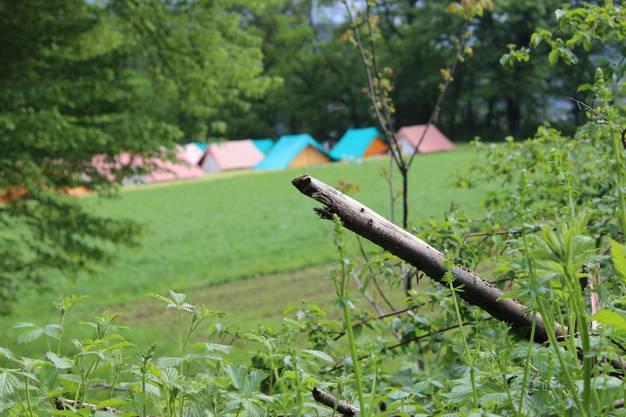 Symbolbild – Zeltlager der Jubla Minischar Stüsslingen-Rohr