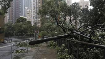 """Taifun """"Mangkhut"""" fegte mit Windgeschwindigkeiten von mehr als 200 Kilometern pro Stunde über die Philippinen hinweg."""