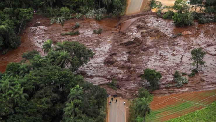 Nach dem Dammbruch im Südosten Brasiliens im Januar begrub eine Schlammlawine Menschen, Häuser und Strassen unter sich. Mindestens 248 Personen kamen ums Leben. (Archivbild)