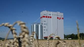 Weizen statt Gartenbeizen: Seit gestern läuft die Knecht-Mühle in Leibstadt – die grösste Mühle im Kanton Aargau – praktisch im 24-Stunden-Betrieb.