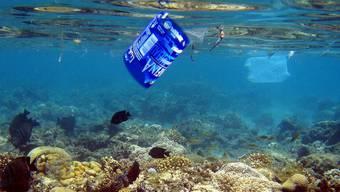 Plastikabfälle in den Weltmeeren verdrängen die Fische. Gemäss einer Studie könnte es im Jahr 2050 im Wasser mehr Plastik als Fische geben. (Symbolbild)