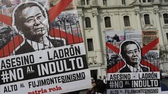Demonstrierende in Lima mit Plakaten, auf den Fujimori als Mörder und Dieb bezeichnet wird, der keine Begnadigung verdiene