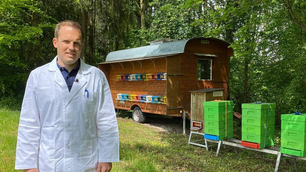 Mit 10 Jahren hatte Cyrill Arnet aus Zug sein erstes Bienenvolk