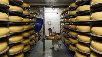 Einblick in eine Käserei in der Zentralschweiz.
