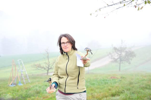 Franziska von Känel-Burger erzählte anhand von Exponaten Wissenswertes über die Bewohner der Hochstammbäume.