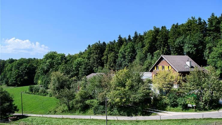 Der Chratten liegt abgelegen oberhalb von Beinwil. Seit 1972 werden hier Suchtkranke behandelt.