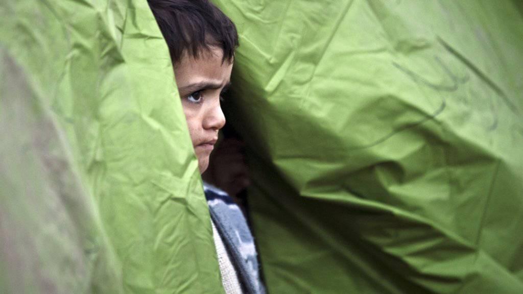 Ein Junge schaut in der griechischen Grenzstadt Idomeni aus einem Zelt. Die an der Grenze zu Mazedonien gestrandeten Flüchtlinge erhalten bisher nur von privaten Organisationen medizinische Hilfe. Jetzt hat Athen ein Gesundheitszentrum angekündigt