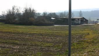 Die Planung im Gebiet Niderfeld soll ohne Gateway-Terminal vorangetrieben werden. JK