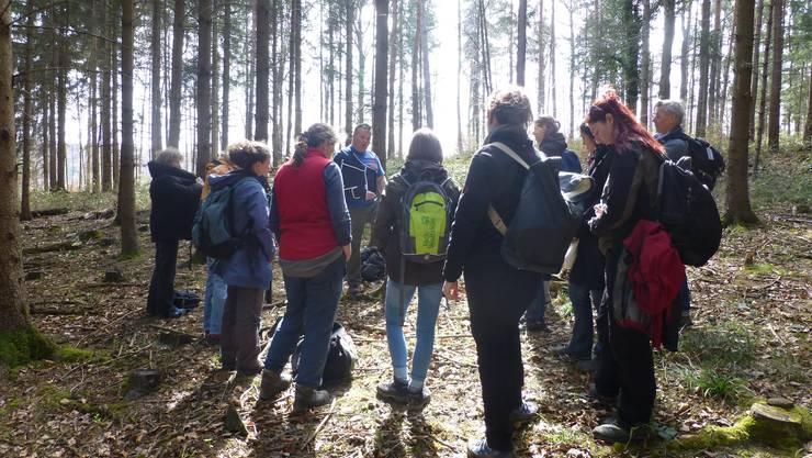 Im monotonen Fichtenwald erfahren die Naturpädagoginnen viel über frühere Waldbewirtschaftung.