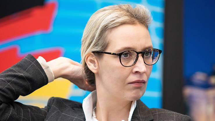 AfD-Fraktionschefin Alice Weidel. (Archivbild)