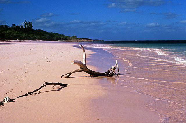Pink Sands, Bahamas