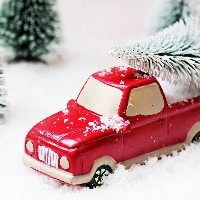 So transportiert ihr euren Weihnachtsbaum sicher nach Hause