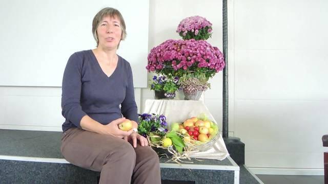 Helen Suter, ehemalige EVP-Einwohnerräting und Projektleiterin Tischlein deck dich in Wettingen, über den Sinn der Abgabestelle.