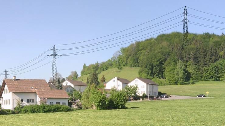 Schreckgespenst Freileitung: Fotomontage der geplanten Hochspannungs-Freileitung in Riniken.