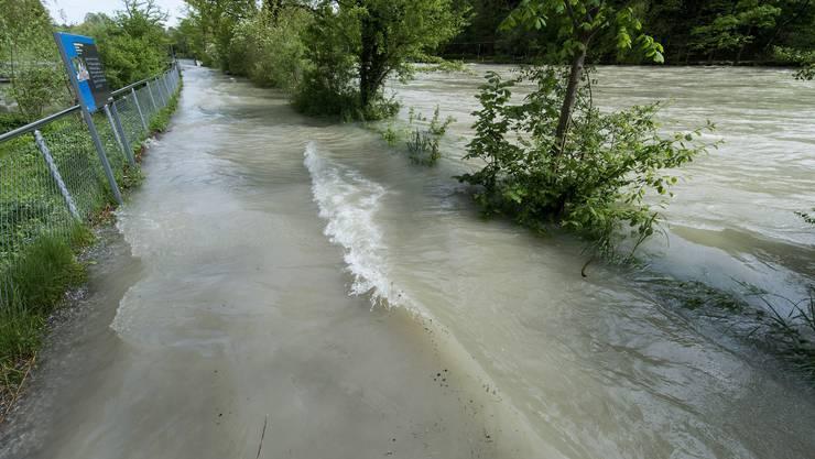 Hochwasser: Die Aare beim Tierpark Dählhölzli.