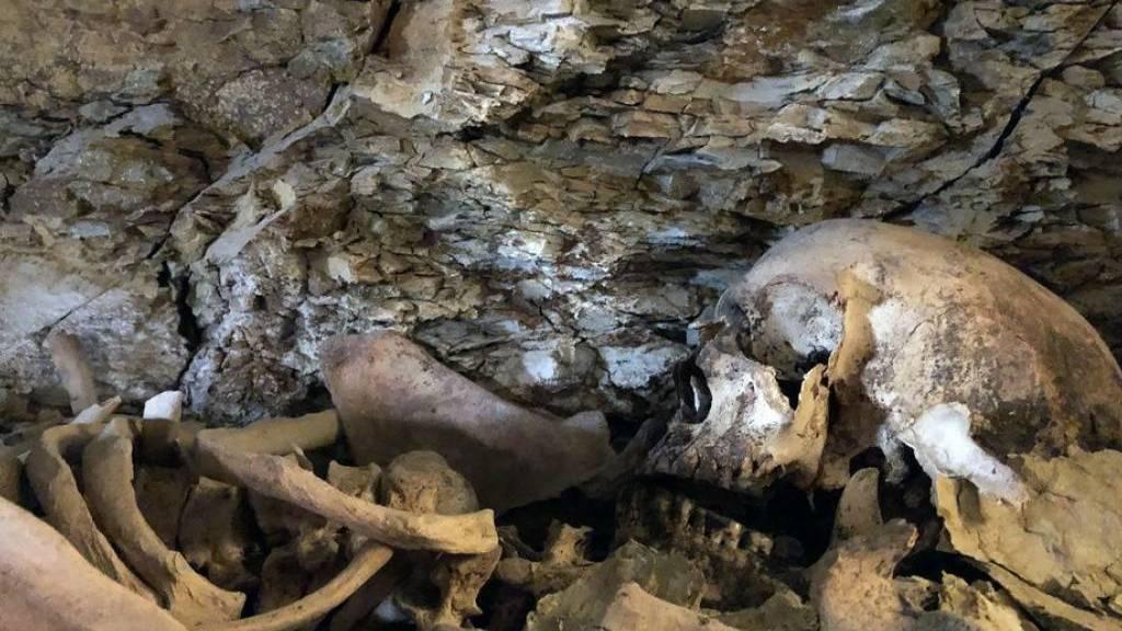 Knapp drei Jahrtausende alte Sarkophage in Ägypten entdeckt