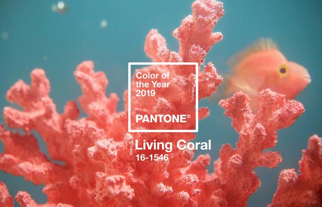 """Um die Kür der Trendfarben kümmert sich seit vielen Jahren Pantone, ein US-amerikanisches Farbinstitut. Dieses Jahr haben die Experten von Pantone Living Coral, ein kräftiges Korallenrot mit Orange-Nuancen zur Trendfarbe 2019 gekürt. Inspiriert wurden die Experten bei ihrer Wahl von der Unterwasserwelt: """"Die Natur spendet uns Energie – und so, wie Korallenriffe denMeeresbewohnern als Nahrungsquelle und Zufluchtsort dienen, schenkt uns das kräftige, aber dennoch dezente Living Coral Wärme, damit wir uns mit Behagen und Elan durch unsere sich ständig verändernde Umwelt bewegen können."""" Dabei lassen sich die Experten außerdemvon aktuellen Strömungen beeinflussen, auchFarbtrends in der Unterhaltungs- und Filmbranche, im Design und in der Kunst werden berücksichtigt."""