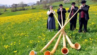 Die Instrumente stehen bereit, jetzt fehlt nur noch ein Platz in der Musikschule.