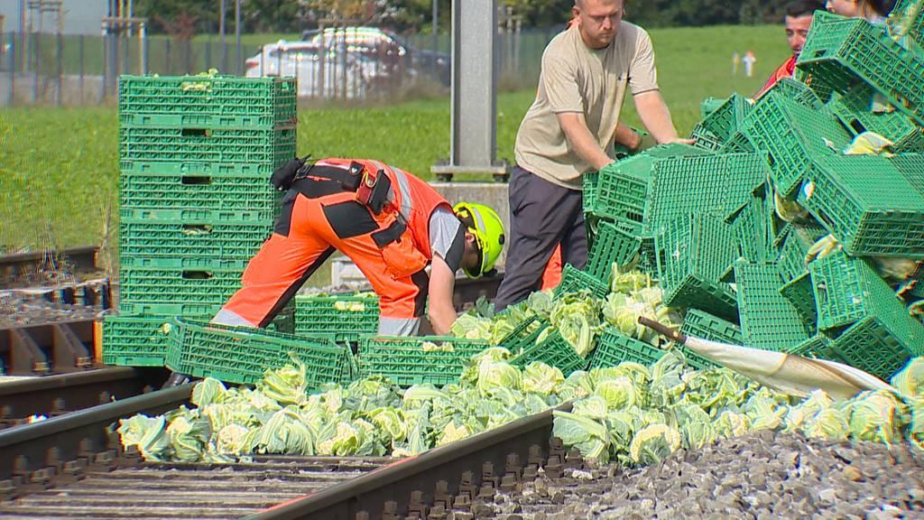 Blumenkohl legt Bahnverkehr in Weinfelden (TG) lahm