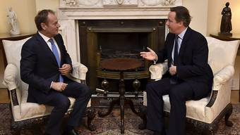 EU-Ratspräsident Donald Tusk spricht mit dem britischen Premier David Cameron über dessen Forderungen für einen Verbleib seines Landes in der EU.