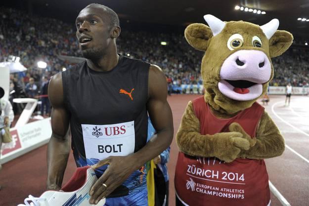 Bold mit Maskottchen, das für die EM 2014 wirbt.