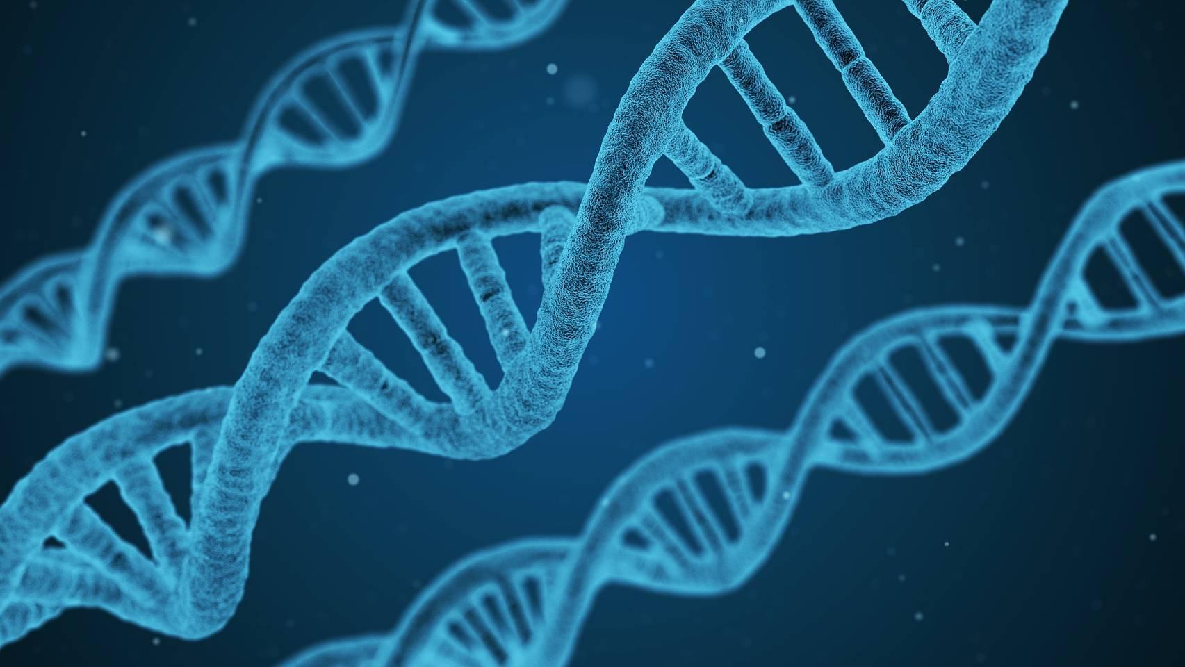 DNA-Spuren sollen gezielter ausgewertet werden