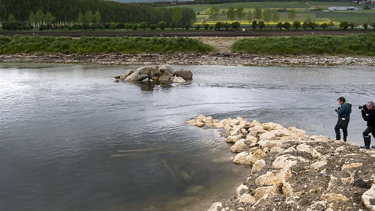 Ein unregelmässiges Ufer und künstliche Inseln sollen zu Flussabschnitten mit unterschiedlich starken Strömungen führen.