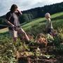 Kleine, vielfältige Felder und viele Menschen, die mithelfen: So stellt sich die Kleinbauernvereinigung die Zukunft der Landwirtschaft vor. (Symbolbild)