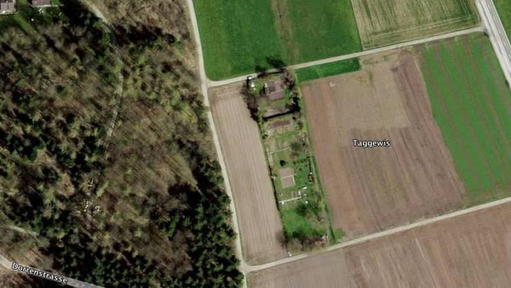 Die Grünfläche mit Bäumen, Sträuchern und Familiengärten auf dem Feld «Taggewis» (Bildmitte) wurde von einem Tag auf den anderen rückgebaut.