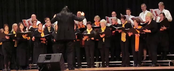 Der Frauenchor Lupfig am Konzert 2011, mit dem Männerchor