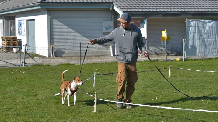 In Hundekursen wird unter anderm die Leinenorientierung oder der Rückruf trainiert. Im Bild ein Hundekurs in Buochs im Kanton Nidwalden.