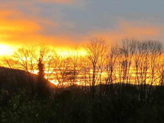 Der Sonnenaufgang am Morgen bei uns