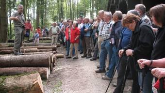 Förster Sebastian Meier erklärte den zahlreichen Interessierten die Nutzhölzer und ihre Verwndungsmöglichkeiten.