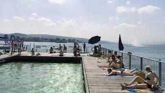 Aus Sicherheitsgründen muss die Stadt Zürich beim Seebad Enge eine Büche fällen.