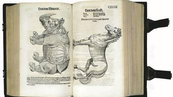 Das «Thierbuch» von Conrad Gessner von 1563. Ho