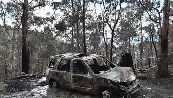 Eine ausgebranntes Auto zeugt von den verheerenden Buschbränden in Australien.