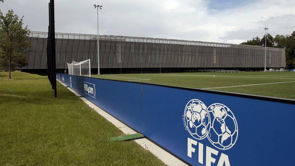 WM-Reform: FIFA lädt zum Online-Gipfel ein