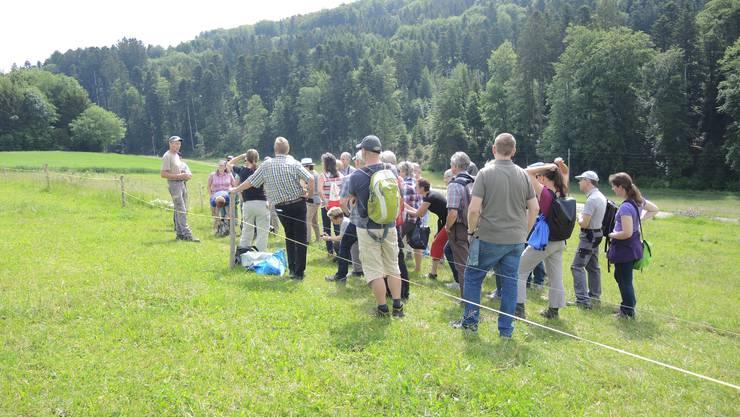 Felix Jaggi berichtet über die neu erstellten Hecken und Strukturen (links im Bild) auf seinem Land.