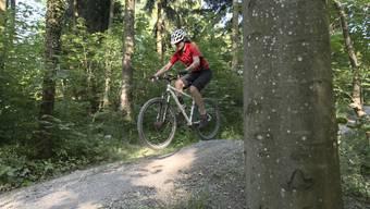 Biker benutzen nicht nur Bike-Trails, wie hier am Uetliberg, sondern oft auch Wanderwege: Dort kommen sie Wanderern in die Quere. Schweizweit gilt es nun, eine friedliche Koexistenz zwischen allen Nutzenden des Waldes zu sichern.