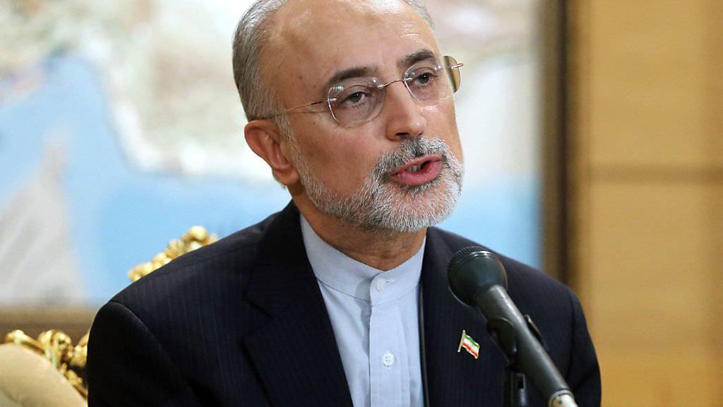 Streitet mit seinem Vorgänger über das Atomabkommen: Der iranische Chefunterhändler Ali Akbar Salehi. (Archiv)