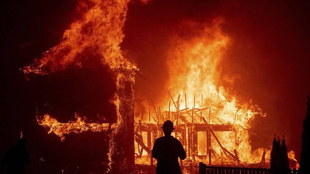 Waldbrand zerstört kalifornische Stadt
