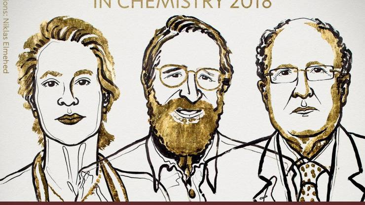 Der Nobelpreis für Chemie geht zur Hälfte an die Amerikanerin Frances Arnold und zu je einem Viertel an ihren Landsmann George Smith und den Briten Sir Gregory Winter. (Bild nobelprize.org)